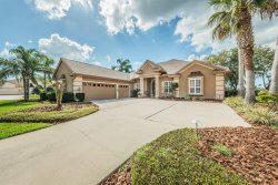 Photo of 3970 Mullenhurst Drive, PALM HARBOR, FL 34685 (MLS # U7848663)
