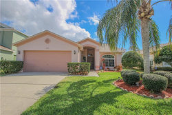 Photo of 1779 Split Fork Drive, OLDSMAR, FL 34677 (MLS # U7848678)