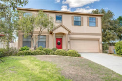 Photo of 1291 Blackrush Drive, TARPON SPRINGS, FL 34689 (MLS # U7849149)