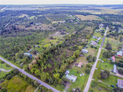 Photo of 0 Ridge Road, WIMAUMA, FL 33598 (MLS # U7849596)