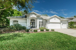 Photo of 1327 Kings Way Lane, TARPON SPRINGS, FL 34688 (MLS # U7851724)