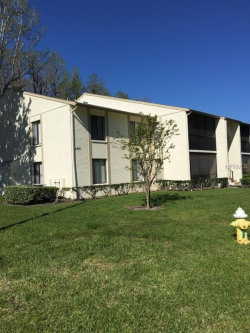 Photo of 1433 Pine Glen Place, Unit B1, TARPON SPRINGS, FL 34688 (MLS # U7851739)
