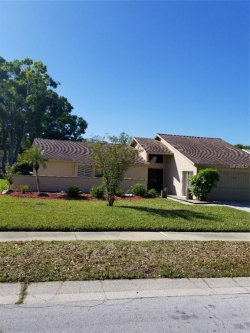 Photo of 2020 Forest View Drive, PALM HARBOR, FL 34683 (MLS # U7851757)