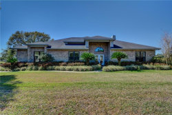Photo of 425 Bennett Road, PIERSON, FL 32180 (MLS # V4716416)