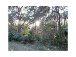 Photo of 1160 Four Wheel Drive, PIERSON, FL 32180 (MLS # V4718287)