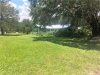 Photo of 130 E Broad Street, PIERSON, FL 32180 (MLS # V4719121)