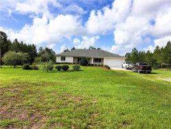 Photo of 665 Dew Drop Lane, PIERSON, FL 32180 (MLS # V4719620)