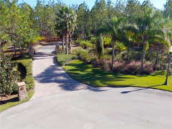 Photo of 4175 Double Cut Drive, DELAND, FL 32724 (MLS # V4721302)