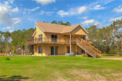 Photo of 998 Buckles Road, PIERSON, FL 32180 (MLS # V4723166)