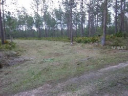 Photo of 520 Volusian Forest Trail, PIERSON, FL 32180 (MLS # V4723191)