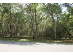 Photo of 27108 Country Oak Drive, BROOKSVILLE, FL 34602 (MLS # W7631131)