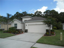 Photo of 11419 Merganser Way, NEW PORT RICHEY, FL 34654 (MLS # W7632897)