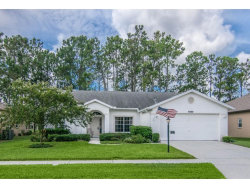 Photo of 9500 Conservation Drive, NEW PORT RICHEY, FL 34655 (MLS # W7633052)