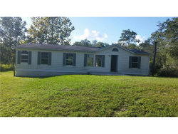 Photo of 10741 Olsen Street, NEW PORT RICHEY, FL 34654 (MLS # W7634491)