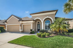 Photo of 1621 Abyss Drive, ODESSA, FL 33556 (MLS # W7635744)