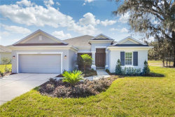 Photo of 17807 Nokota Avenue, HUDSON, FL 34667 (MLS # W7638929)