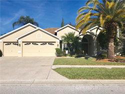 Photo of 1339 Wild Pine Court, TRINITY, FL 34655 (MLS # W7638978)