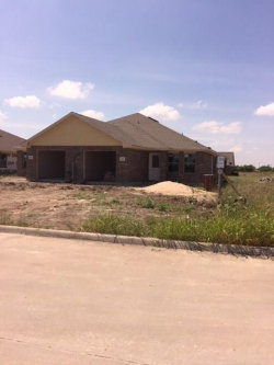 Photo of 000 Robineta Lane, Gunter, TX 75058 (MLS # 13647705)