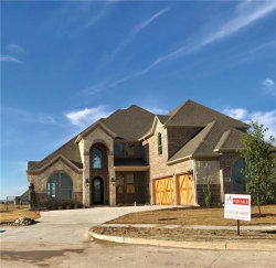 Photo of 1169 Stonebridge Pass, Gunter, TX 75058 (MLS # 13671762)