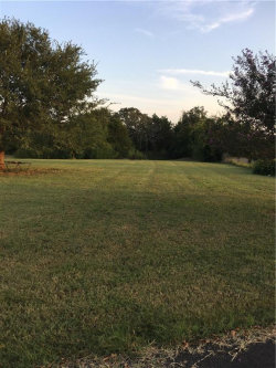 Photo of 2709 Vz County Road 4123, Canton, TX 75103 (MLS # 13697207)