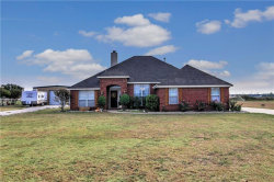 Photo of 192 Rene Lane, Gunter, TX 75058 (MLS # 13719226)