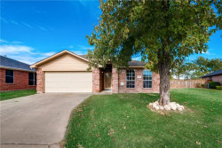 Photo of 329 Lake Travis Drive, Wylie, TX 75098 (MLS # 13730391)