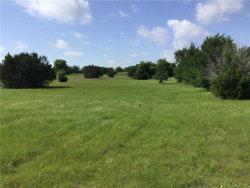 Photo of 112 Canyon Lake Drive, Annetta South, TX 76008 (MLS # 13743900)