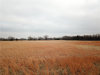 Photo of 15.9ac Highway 377, Whitesboro, TX 76273 (MLS # 13756160)