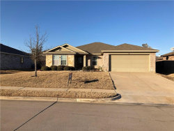 Photo of 1411 Feather Crest Drive, Krum, TX 76249 (MLS # 13758366)