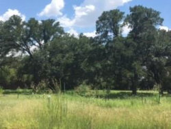 Photo of 705 Lyndsey Way, Lot 12, Colleyville, TX 76034 (MLS # 13770652)