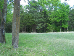 Photo of TBD Fairway Loop Drive, Lot 15, Pottsboro, TX 75076 (MLS # 13776698)