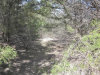 Photo of TBD Quail Run Road, Lot 6, Sherman, TX 75090 (MLS # 13796625)