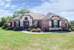 Photo of 2885 Forest Hill Drive, Cross Roads, TX 76227 (MLS # 13846166)