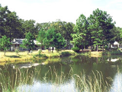 Photo of 260 Van Zandt County Road, Unit 1717, Grand Saline, TX 75140 (MLS # 13872884)