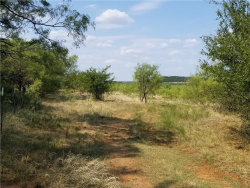 Photo of TBD N. Highway 16, Graford, TX 76449 (MLS # 13913275)