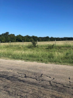 Photo of 397 Well Road, Denison, TX 75020 (MLS # 13939044)