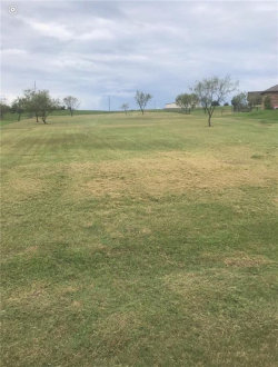 Photo of 268 Scenic View, Aledo, TX 76008 (MLS # 13956018)