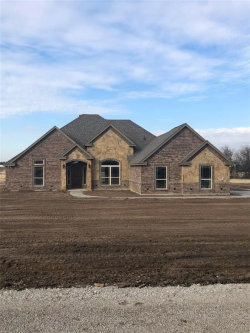 Photo of 2031 Jo Jones Lane, Springtown, TX 76082 (MLS # 14010593)
