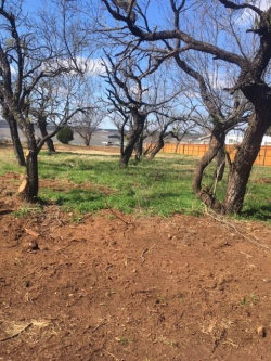 Photo of 753 M Anthony Loop, Lot 1-S, Possum Kingdom Lake, TX 76449 (MLS # 14020958)