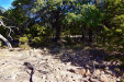 Photo of 300 A County Road 319, Early, TX 76802 (MLS # 14237235)