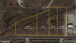 Photo of Lot 3 FM 1173, Krum, TX 76249 (MLS # 14241395)