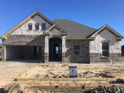 Photo of 1114 Alderwood Drive, Justin, TX 76247 (MLS # 14245409)