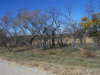 Photo of 013 CR County Road 135, Lot 11, Brownwood, TX 76801 (MLS # 14382964)
