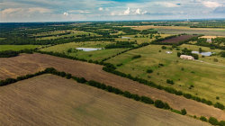 Tiny photo for TBD County Road 291, Van Alstyne, TX 75495 (MLS # 14397827)