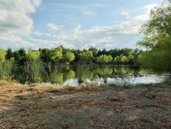 Tiny photo for 4459 W HWY 82, Ector, TX 75439 (MLS # 14399241)