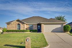 Photo of 2124 Turtle Cove Drive, Mansfield, TX 76063 (MLS # 14412106)