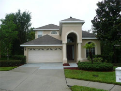 Photo of 16316 Dovetail Way, SPRING HILL, FL 34610 (MLS # T2888164)