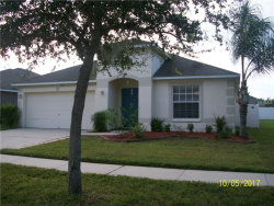 Photo of 8440 Carriage Pointe Drive, GIBSONTON, FL 33534 (MLS # T2907421)