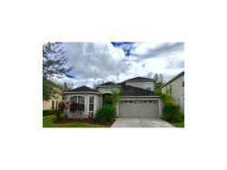 Photo of 4332 Waterville Avenue, WESLEY CHAPEL, FL 33543 (MLS # T2907711)