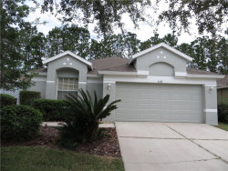 Photo of 5218 Gato Del Sol Circle, WESLEY CHAPEL, FL 33544 (MLS # T2908686)
